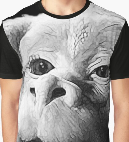 Falkor The Luck Dragon From The Neverending Story Design Graphic T-Shirt