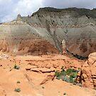 Kodachrome State Park,Utah USA by Anthony & Nancy  Leake
