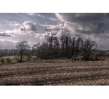Tynedale Field Photographic Print