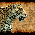 Jaguar Wild Cat Animal-Lover Artwork by Val  Brackenridge