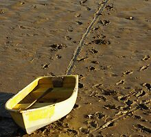 Dragged ashore... by Mike Warrilow