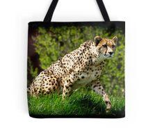 Cheetah Wild Cat Animal-Lover Wildlife Poster Tote Bag