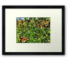 The World of Small Framed Print