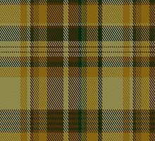 01527 Alberta (CIDD 28106) Commemorative Tartan Fabric Print Iphone Case by Detnecs2013