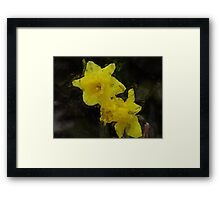 Yellow Daffodils Floral Impressionist Painting Poster Framed Print