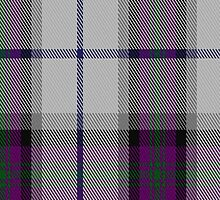 01534 Alexander of Menstry Dress Clan/Family Tartan Fabric Print Iphone Case by Detnecs2013