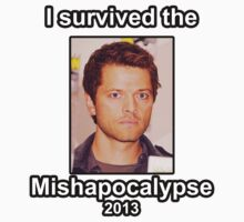 I survived the Mishapocalypse by Mangax3me