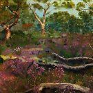 Sterling Ranges Wildflowers by Pam Wilkie