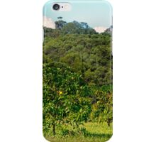 Fruit tree on a rural property iPhone Case/Skin
