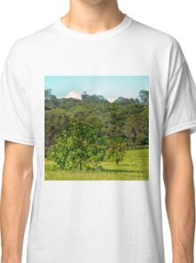 Fruit tree on a rural property Classic T-Shirt