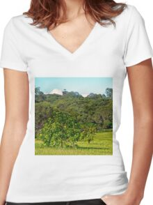 Fruit tree on a rural property Women's Fitted V-Neck T-Shirt