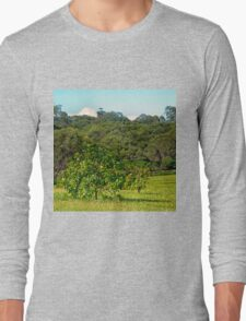 Fruit tree on a rural property Long Sleeve T-Shirt