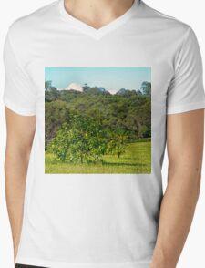 Fruit tree on a rural property Mens V-Neck T-Shirt