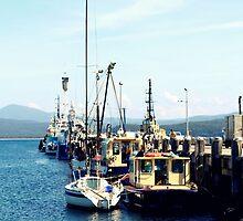 Eden Wharf  by Evita