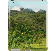 Fruit tree on a rural property iPad Case/Skin
