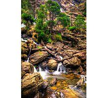 St Columba Falls Photographic Print