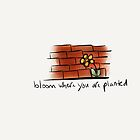 Bloom Where You Are Planted by Pamela Shaw
