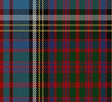 01563 Anderson (Highland Society of London) Family/Clan Tartan Fabric Print Iphone Case by Detnecs2013