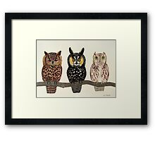 Who's Who Framed Print