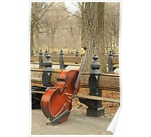 Double Bass in Central Park Poster