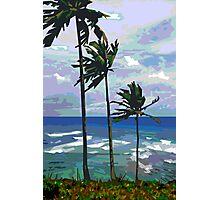 Three Palms Photographic Print