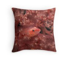 Soft Coral Ghost Goby Fish Throw Pillow