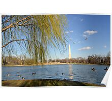 Spring in the District of Columbia Poster