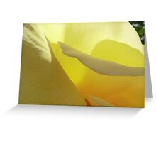 The Yellow Petal Mountains  Greeting Card