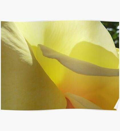 The Yellow Petal Mountains  Poster