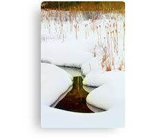 Reflections in the Snow Canvas Print