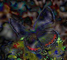 Butterflies in flight by dalsART