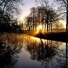 Morning light enchantment by jchanders