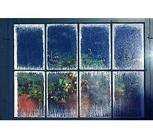 The Hothouse Window Photographic Print