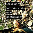 Leave only foot prints take only photographs  by Roseina