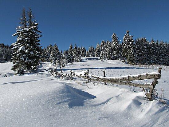 Snowy Winter Scene by kirilart
