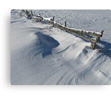 Snowy Winter Scene Detail Canvas Print