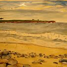 pebble beach panel 2 by Caroline  Hajjar Duggan