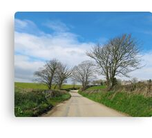 English Country Road in Cornwall Canvas Print