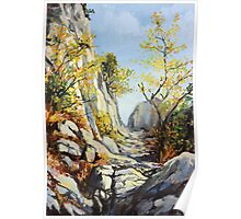 Marble path in the Autumn Poster