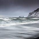 Sea Stacks- Vik Iceland by Pascal Lee (LIPF)