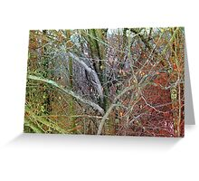 Forrest Chaos Greeting Card