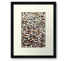 Stones till the end Framed Print