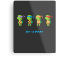 Turtle Power Metal Print