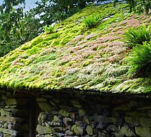 Fluffy Roof, Lake District Barn by rennaisance