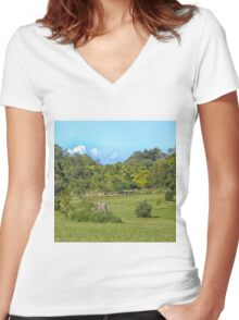 Beautiful Rural Property Women's Fitted V-Neck T-Shirt