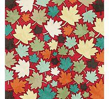 Autumn Remnants.  Photographic Print