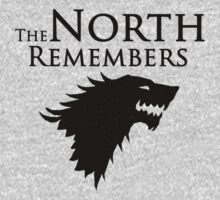 The North Remembers by ScottW93