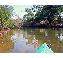 Kayaking in Sanibel Island - Mangrove Nature Landscapes Photographic Print