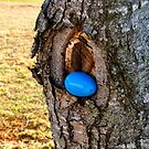 Easter Egg on Tree by ThinkPics