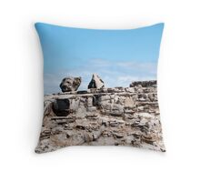only two Throw Pillow